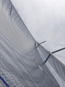 Randa Millenium Carbon_Cippa Lippa 8